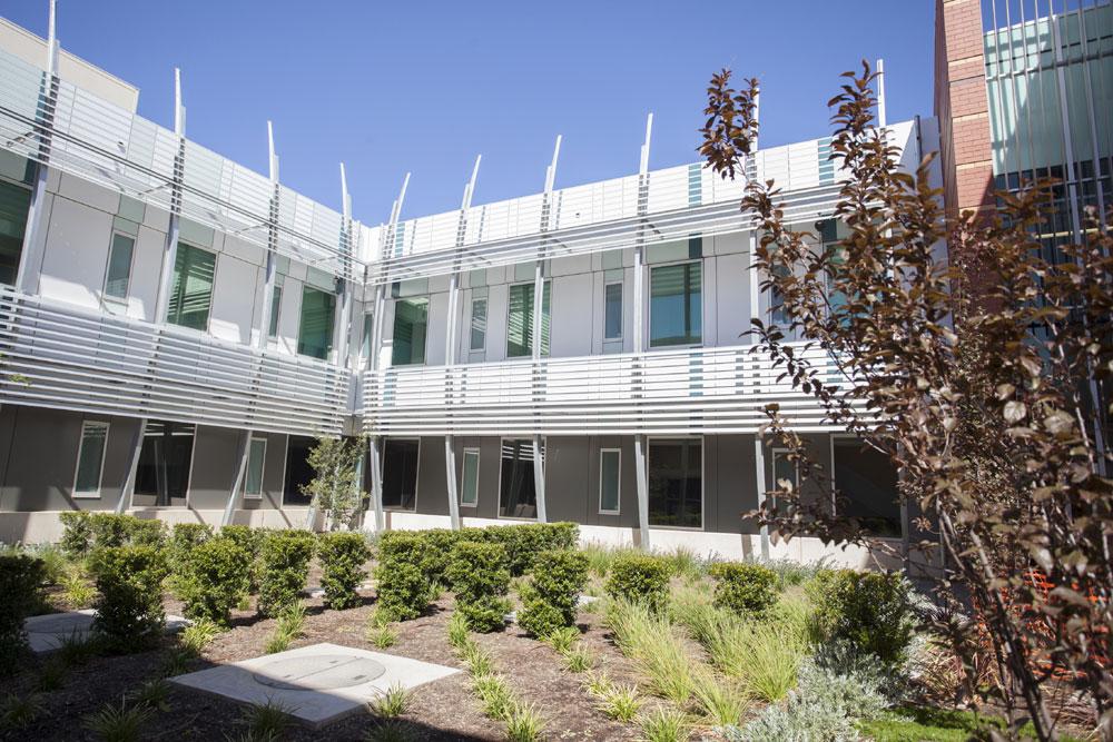 Lyell McEwin Hospital Upgrade